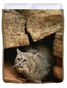 A Bobcat Pokes Out From Its Alcove Duvet Cover