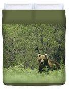 A Brown Bear In Tall Grasses Duvet Cover