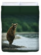 A Brown Bear Standing At Waters Edge Duvet Cover