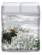 A Bull Moose On A Snow Covered Hillside Duvet Cover