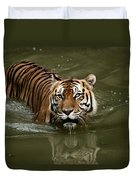 A Captive Sumatran Tiger Panthera Duvet Cover