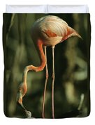 A Caribbean Flamingo Stands On Its Nest Duvet Cover