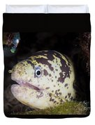 A Chain Moray Eel Peers Out Of Its Hole Duvet Cover