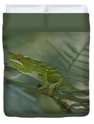 A Chameleon With Yellow Eyes Balances Duvet Cover