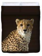 A Cheetah Acinonyx Jubatus Urinates Duvet Cover