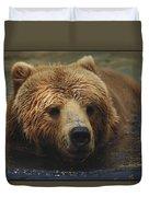 A Close View Of A Captive Kodiak Bear Duvet Cover