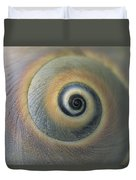 A Close View Of A Moon Snail Shell Duvet Cover