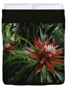 A Close View Of A Tropical, Red Flower Duvet Cover