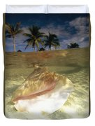 A Conch Shell Rests Beneath The Clear Duvet Cover