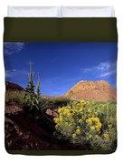A Desert Landscape With Rock Formations Duvet Cover