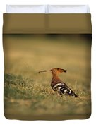 A Eurasian Hoopoe With An Insect Duvet Cover