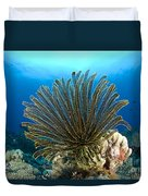 A Feather Star With Arms Extended Duvet Cover