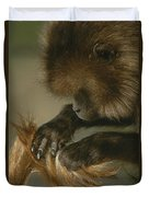 A Female Gelada, Theropithecus Gelada Duvet Cover