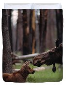 A Female Moose Nuzzles Her  Young Duvet Cover
