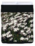 A Field Of Prolofic White Daisy Flowers Duvet Cover