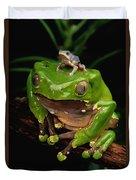 A Frog Phylomedusa Bicolor Perched Duvet Cover