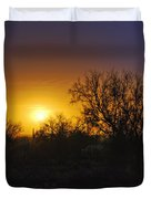 A Golden Saguaro Sunrise Duvet Cover