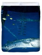 A Great Barracuda Beneath A Boat, Kimbe Duvet Cover