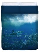 A Great White Shark Swims Close Duvet Cover