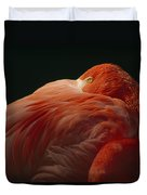 A Greater Flamingo With Its Head Duvet Cover