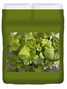 A Green Leafy Vegetable Plant After Watering In Bright Sunrise Duvet Cover