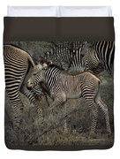 A Grevys Zebra With Young In Samburu Duvet Cover