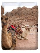 A Group Of Camels Sit Patiently Duvet Cover