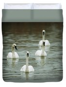 A Group Of Swans Swimming On A County Duvet Cover