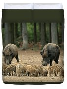 A Group Of Young Wild Boars Nose Duvet Cover