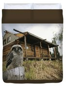 A Hawk Owl Sits On A Stump Near A Log Duvet Cover
