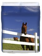 A Horse Peers Over A Fence Duvet Cover
