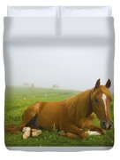 A Horse Sitting On The Grass In A Duvet Cover