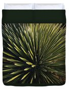 A Lechuguilla Plant In The Desert Duvet Cover