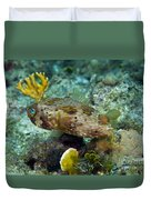 A Long-spined Porcupinefish, Key Largo Duvet Cover by Terry Moore
