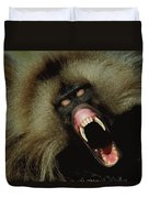 A Male Gelada Baboon Bares His Fangs Duvet Cover