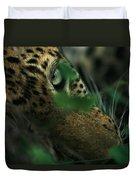 A Male Leopard Dozes Duvet Cover