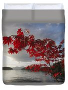 A Maple Tree In Fall Foliage Frames Duvet Cover