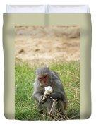 A Monkey Enjoying An Ice Cream Cone Inside Delhi Zoo Duvet Cover