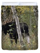 A Moose Alces Alces Americana With An Duvet Cover