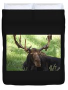 A Moose Duvet Cover by Ernie Echols