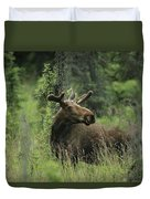 A Moose Stands In Tall Grass Duvet Cover