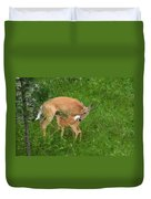 A Mother's Love - Doe And Fawn Duvet Cover