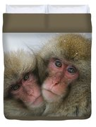 A Pair Of Japanese Macaques, Or Snow Duvet Cover