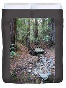 A Peaceful Redwood Creek On Mt Tamalpais Duvet Cover