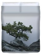 A Pine Tree Clings To A Rocky Ridge Duvet Cover