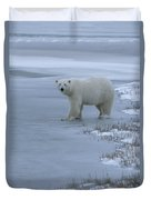 A Polar Bear Stepping Onto Ice Duvet Cover