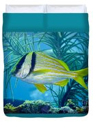 A Porkfish Swims By Sea Plumes Duvet Cover