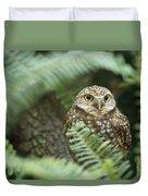 A Portrait Of A Captive Burrowing Owl Duvet Cover