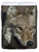 A Portrait Of A Gray Wolf Duvet Cover