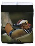 A Portrait Of A Mandarin Duck Duvet Cover